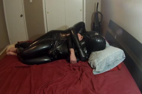 Two Pups Having Some Rubbery fun.