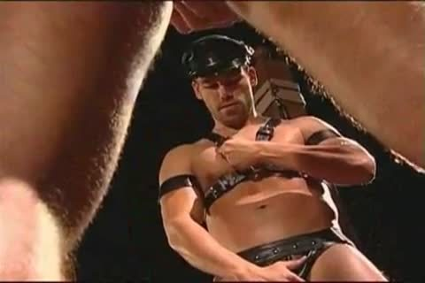 homosexual Leather Muscle