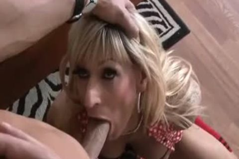 t-girl And guy