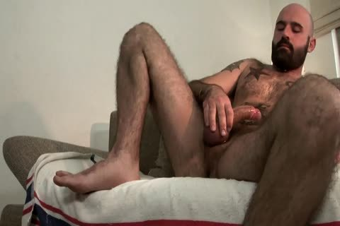 hairy Bear stroking