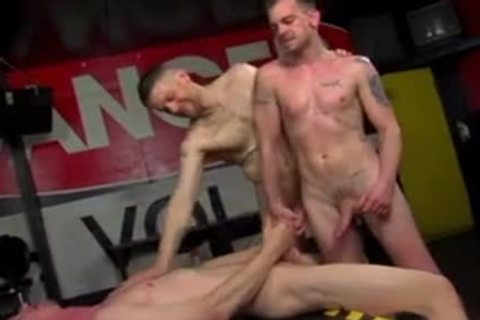 cum plowing Sex Pigs