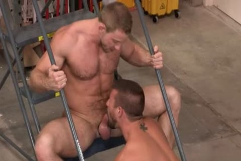 Muscle Bear butthole rimming With cumshot