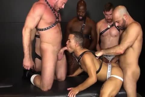 RR - pretty N raw Daddy gangbang!