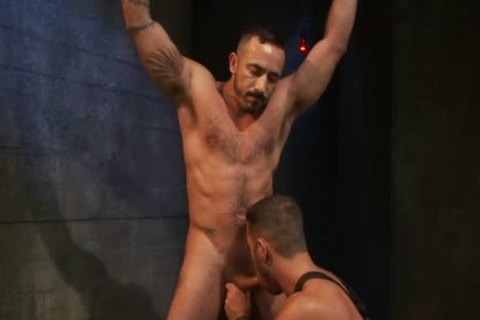 charming homo fastened And anal cumshot