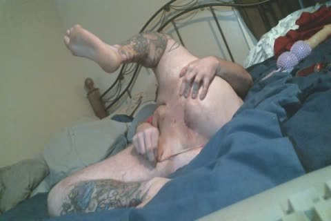 Harity plump Bear spreads arse In thong pants Rides toy